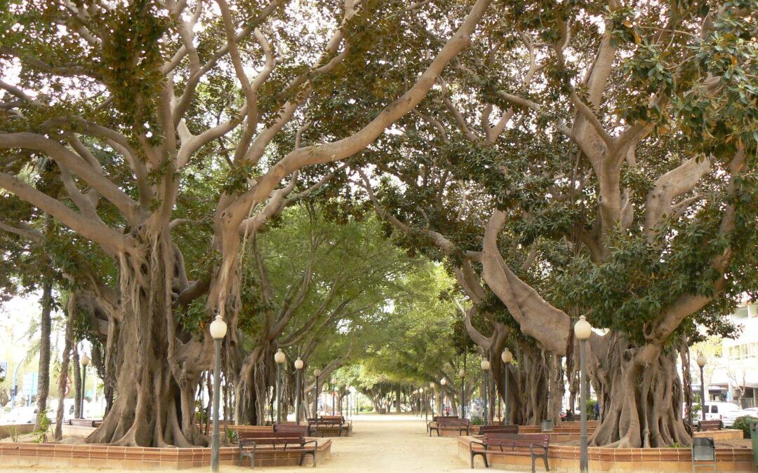 El parque de Canalejas será regado con caudal de la depuradora Rincón de León